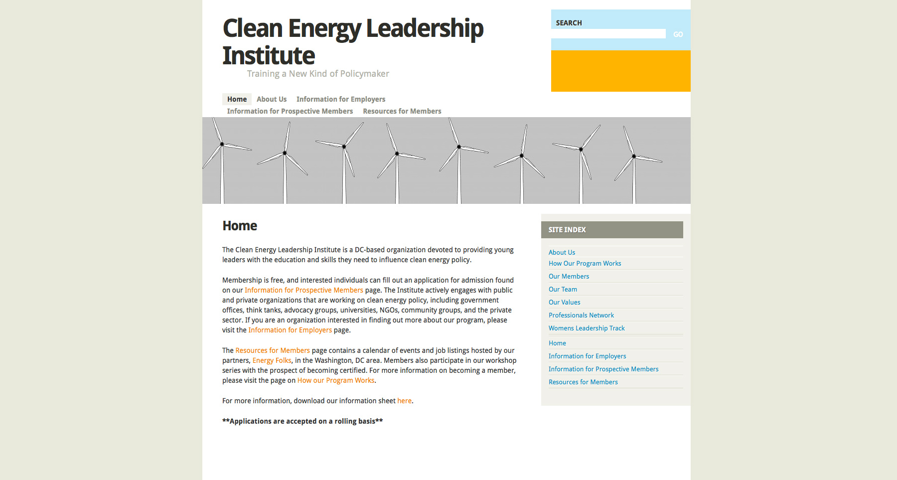 Clean Energy Leadership Institute website design before